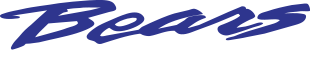 Bears Auto Group